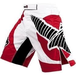 Hayabusa Chikara Shorts