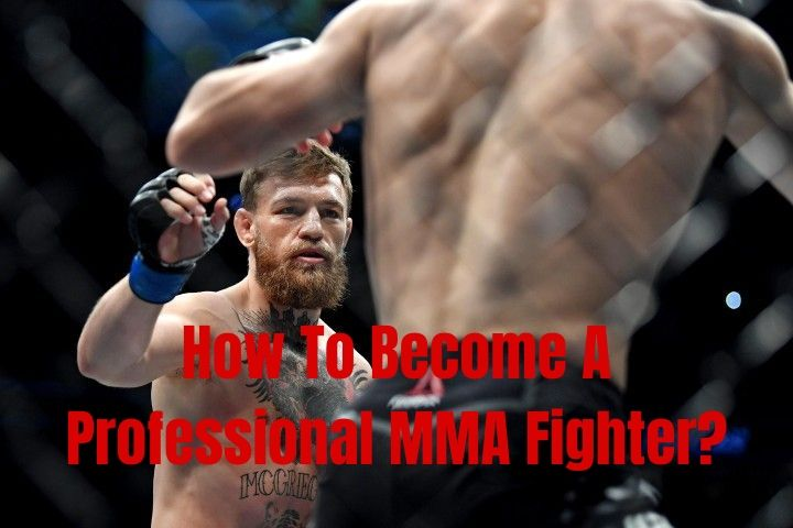 How To Become A Professional MMA Fighter