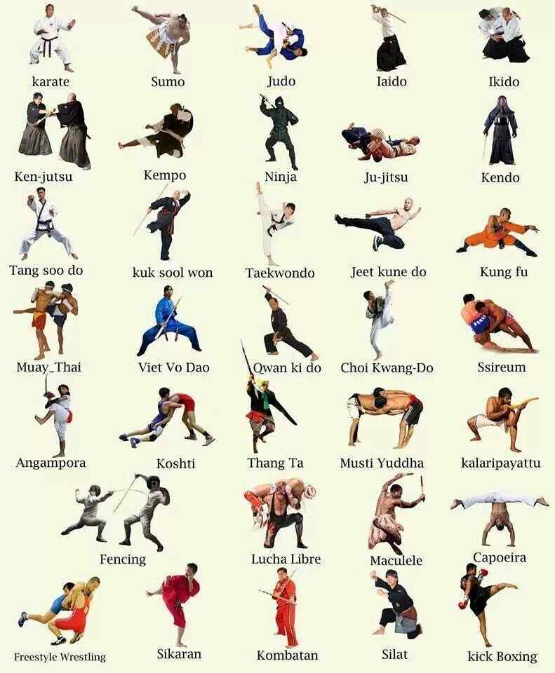Martial arts styles