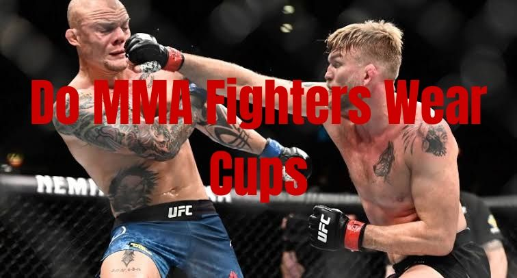 Do Mma Fighters Wear Cups Here Is The Truth 2020