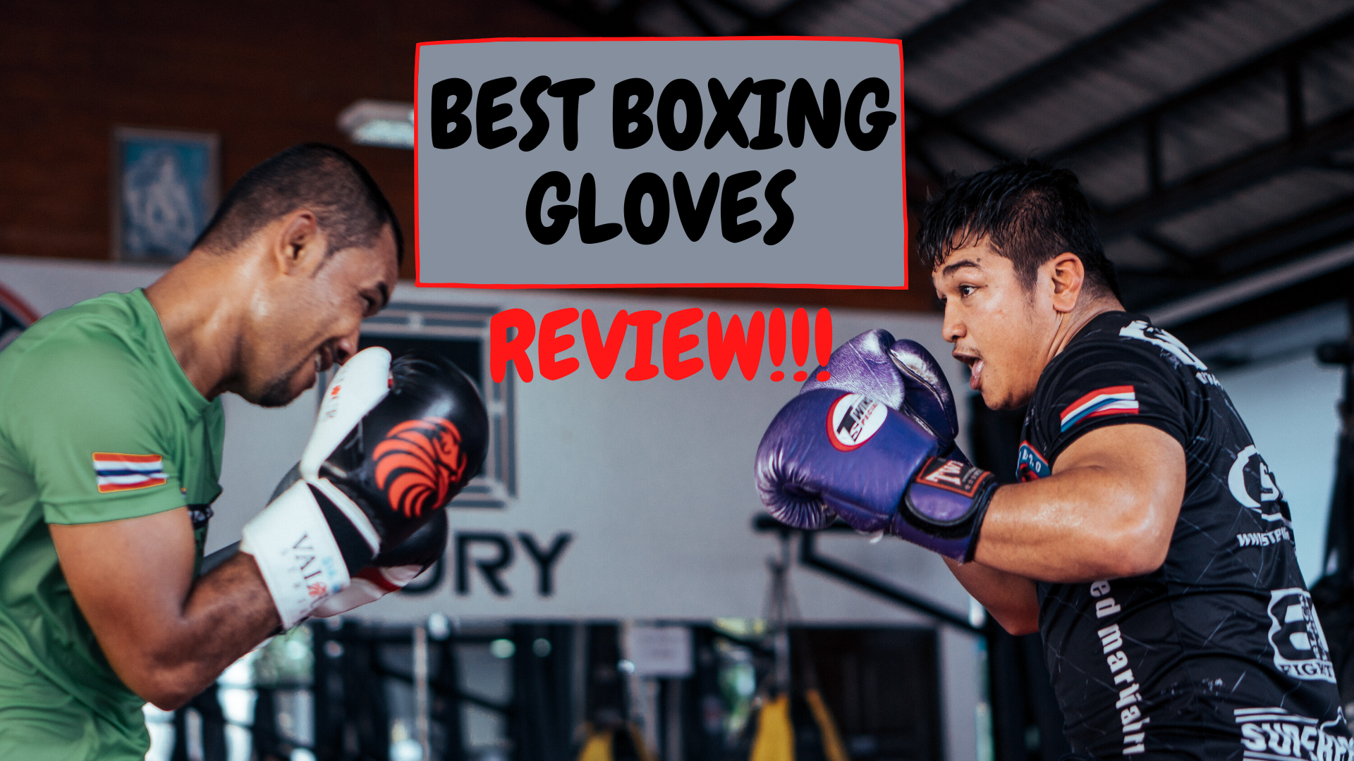 Best Boxing gloves for training