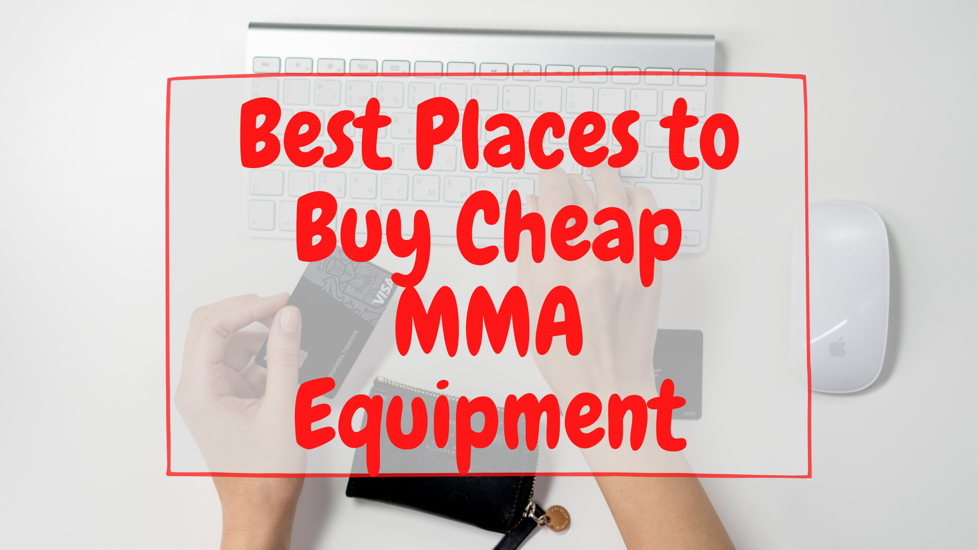 Best Places to Buy Cheap MMA equipment