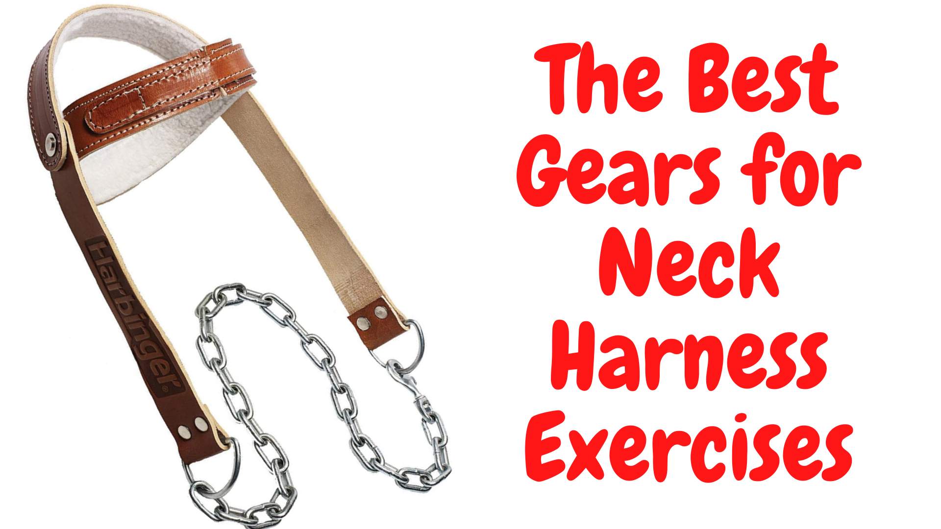 neck harness exercises